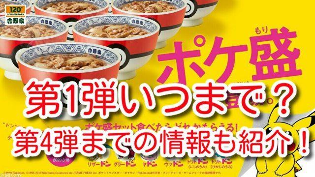 ポケ盛牛丼