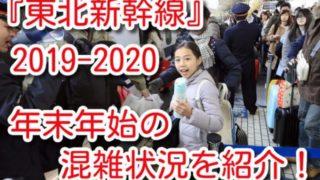 東北新幹線 年末年始 混雑状況